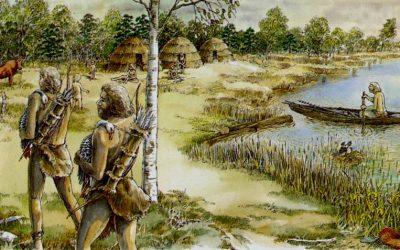 De voeding van jagers-verzamelaars (oermens) en de moderne mens